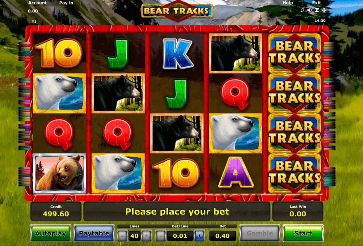 bear tracks novomatic gokkast