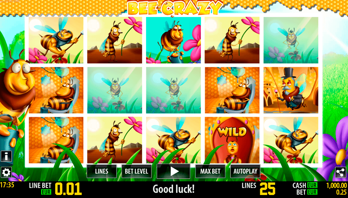 bee crazy hd world match gokkast