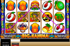 big kahuna microgaming gokkast