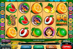 big kahuna snakes and ladders microgaming gokkast