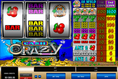 cash crazy microgaming gokkast