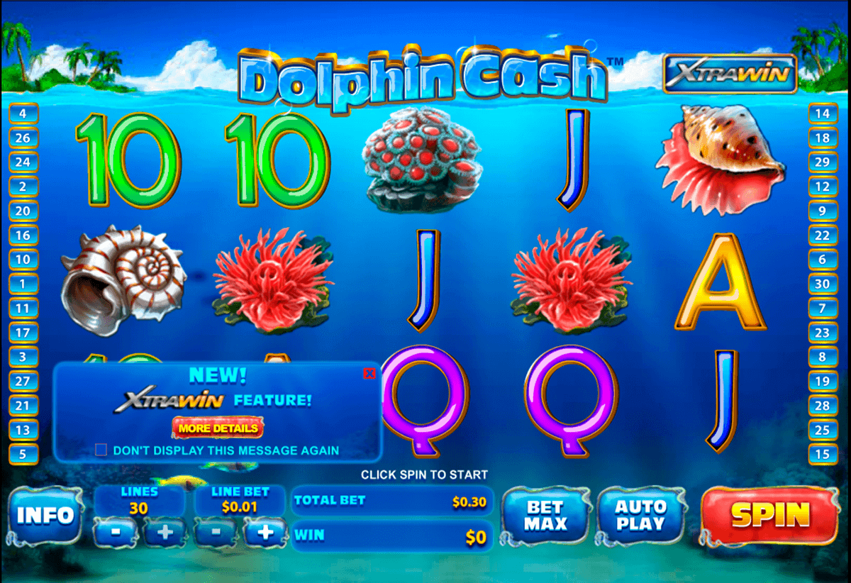 dolphin cash playtech gokkast