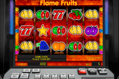 flame fruits novomatic gokkast