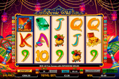 genie wild netgen gaming gokkast