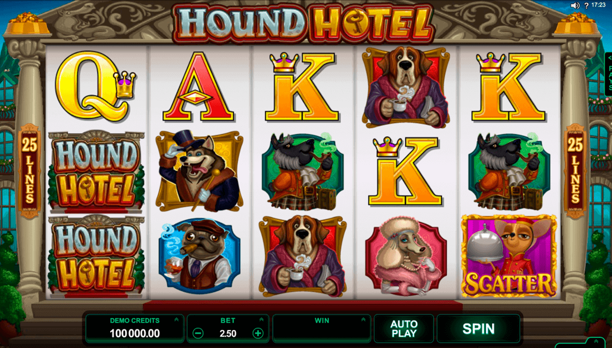 hound hotel microgaming gokkast