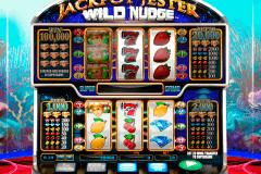 jackpot jester wild nudge netgen gaming gokkast