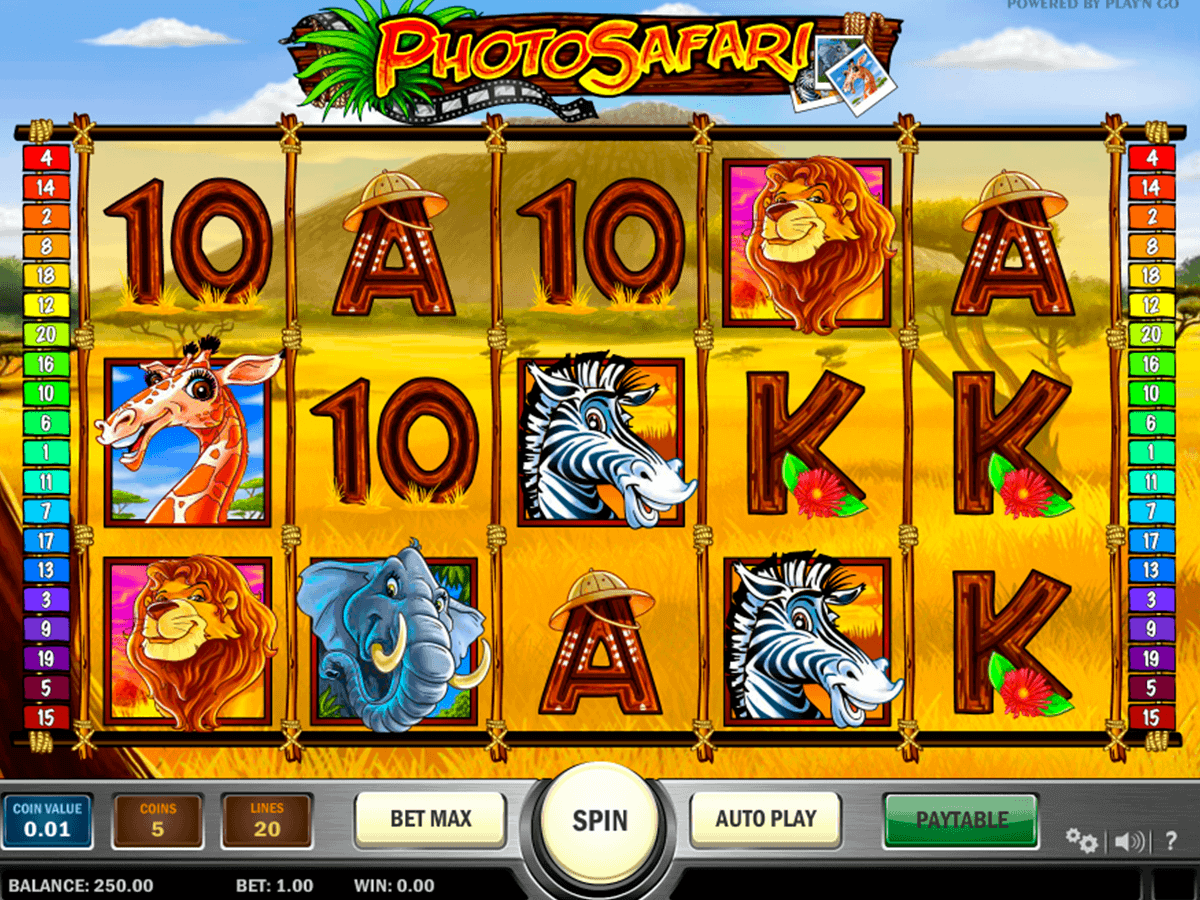 Spiele Safari Samba - Video Slots Online