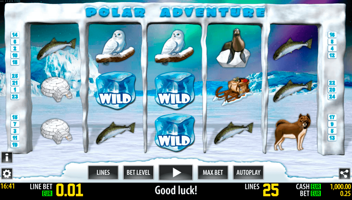 polar adventure hd world match gokkast