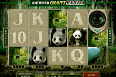 untamed giant panda microgaming gokkast