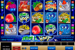 what a hoot microgaming gokkast
