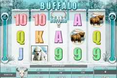 white buffalo microgaming gokkast