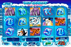 wild gambler arctic adventure playtech gokkast