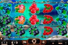 winterberries yggdrasil gokkast